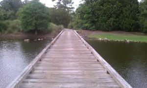 Bridge over placid lake