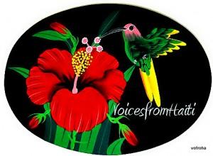 VoicesfromHaiti's Hummingbird