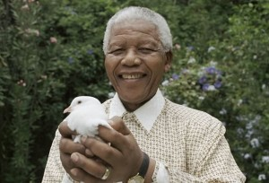 mandela peace dove