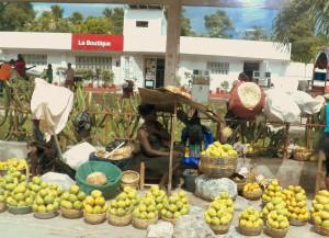 machann mango an ayiti
